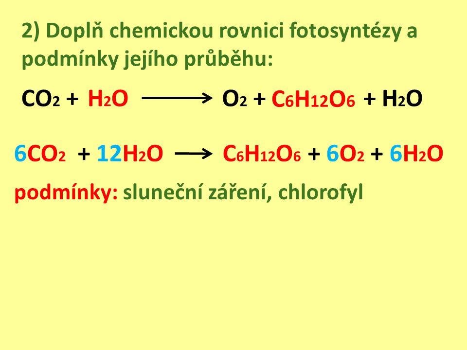 2) Doplň chemickou rovnici fotosyntézy a podmínky jejího průběhu: CO 2 + O 2 ++ H 2 O 6CO 2 + 12H 2 O C 6 H 12 O 6 + 6O 2 + 6H 2 O podmínky: sluneční záření, chlorofyl H2OH2O C 6 H 12 O 6