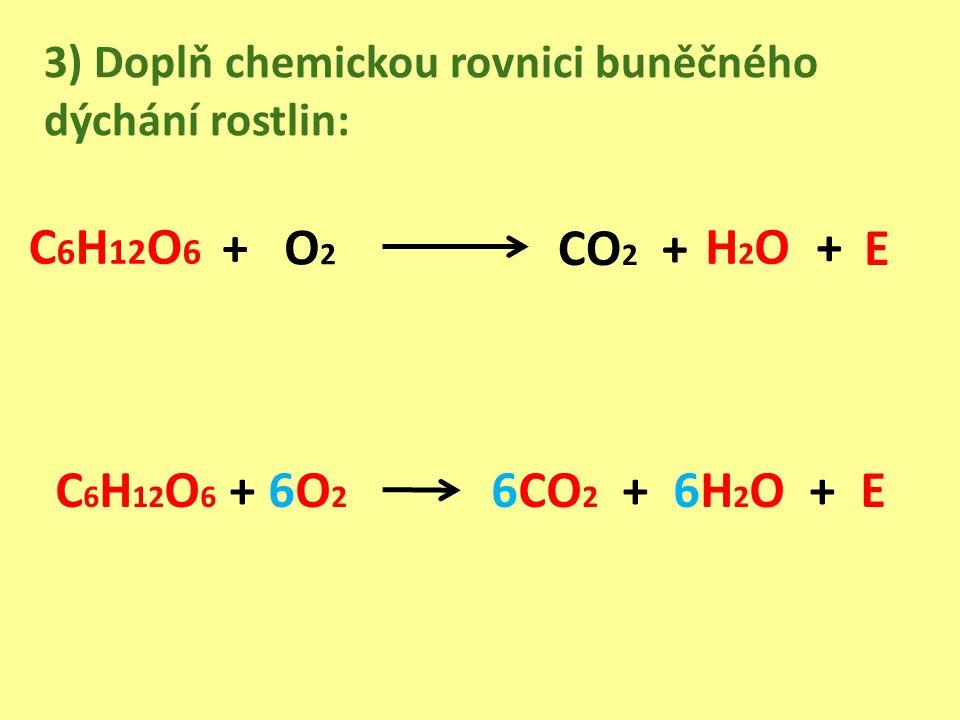 3) Doplň chemickou rovnici buněčného dýchání rostlin: CO 2 + + O 2 C 6 H 12 O 6 + 6O 2 6CO 2 + 6H 2 O + E +C 6 H 12 O 6 H2OH2O E
