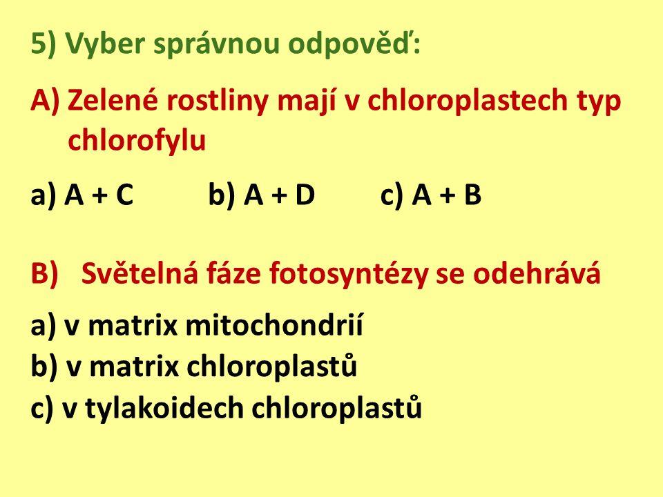 A)Zelené rostliny mají v chloroplastech typ chlorofylu 5) Vyber správnou odpověď: a) A + Cb) A + D c) A + B B) Světelná fáze fotosyntézy se odehrává a) v matrix mitochondrií b) v matrix chloroplastů c) v tylakoidech chloroplastů
