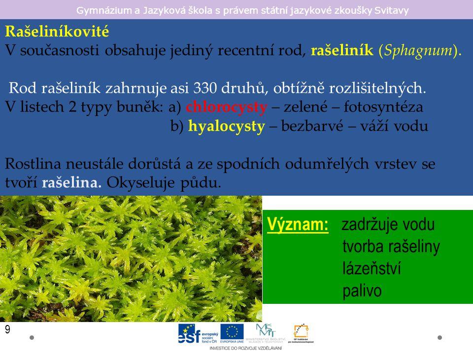 Gymnázium a Jazyková škola s právem státní jazykové zkoušky Svitavy Rašeliníkovité V současnosti obsahuje jediný recentní rod, rašeliník (Sphagnum).