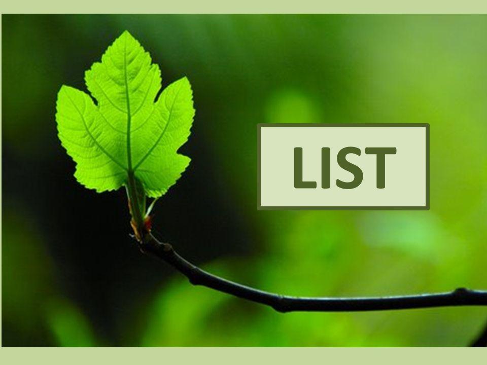 Nadzemní vegetativní orgán Vyrůstá z uzlin na stonku List2