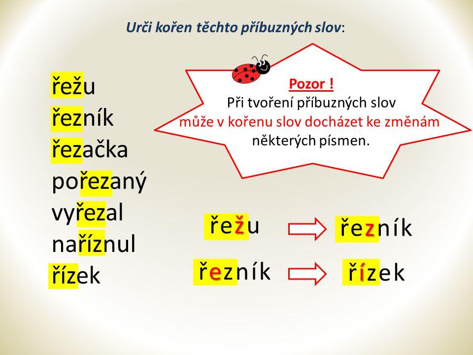 Slova, která spolu souvisí významem a mají stejný kořen, se nazývají SLOVA PŘÍBUZNÁ.