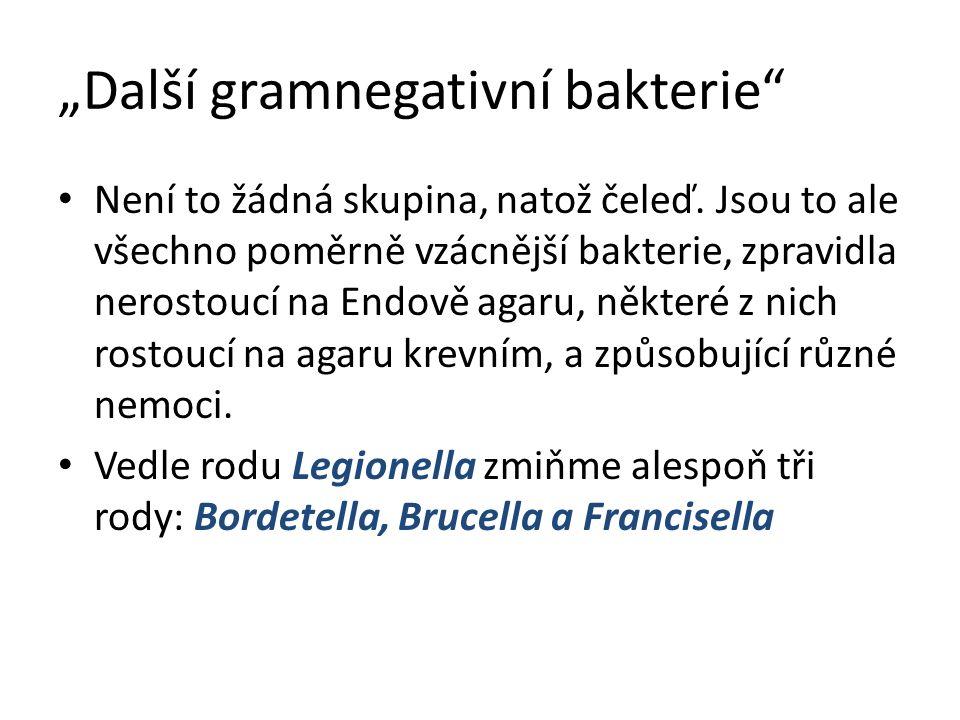 """""""Další gramnegativní bakterie Není to žádná skupina, natož čeleď."""