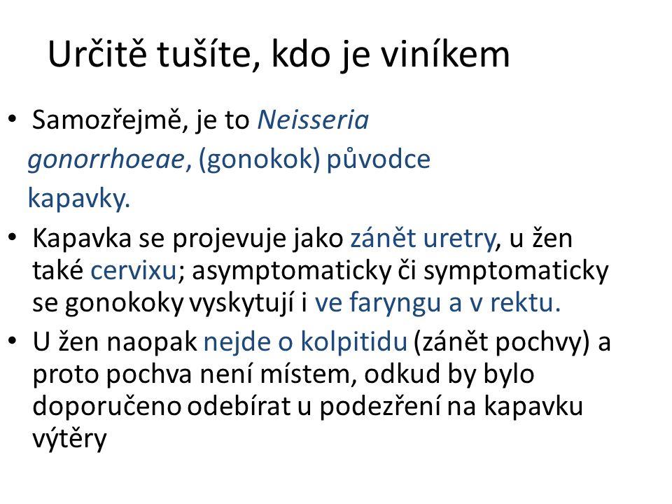 Určitě tušíte, kdo je viníkem Samozřejmě, je to Neisseria gonorrhoeae, (gonokok) původce kapavky. Kapavka se projevuje jako zánět uretry, u žen také c