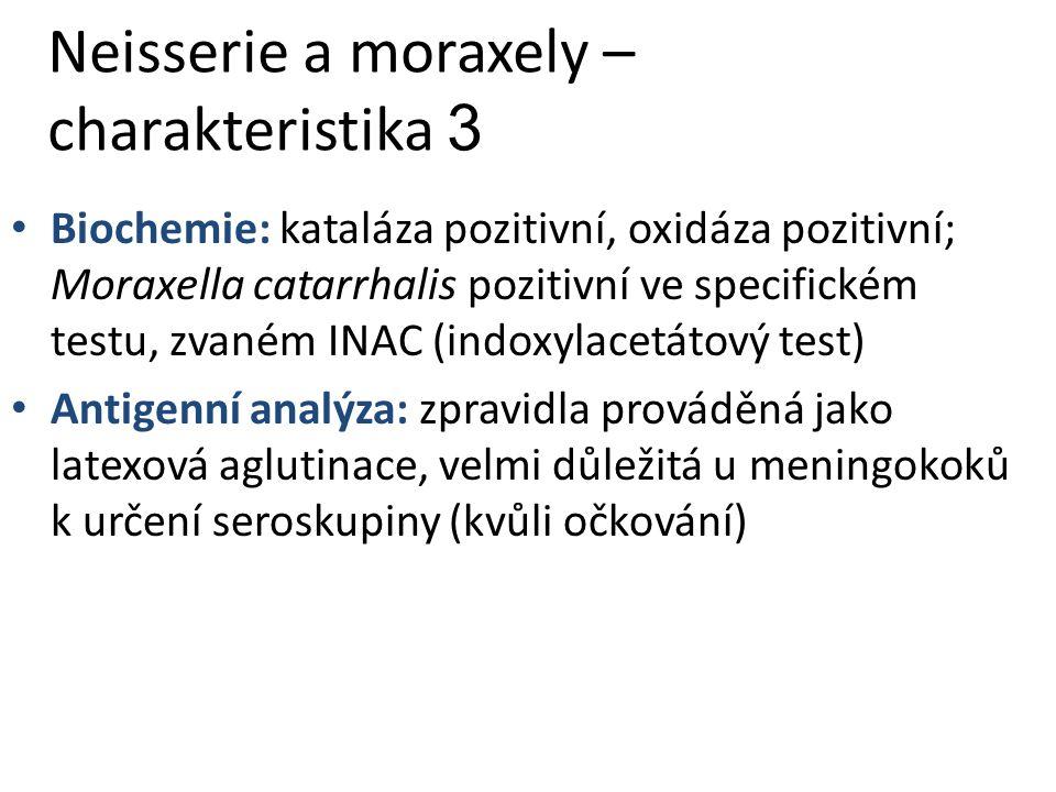 Neisserie a moraxely – charakteristika 3 Biochemie: kataláza pozitivní, oxidáza pozitivní; Moraxella catarrhalis pozitivní ve specifickém testu, zvaném INAC (indoxylacetátový test) Antigenní analýza: zpravidla prováděná jako latexová aglutinace, velmi důležitá u meningokoků k určení seroskupiny (kvůli očkování)