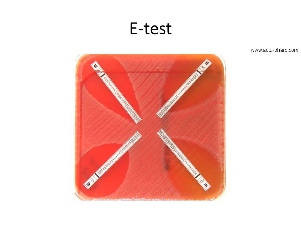 E-test www.actu-pharo.com