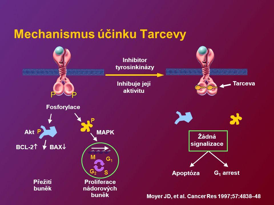 Mechanismus účinku Tarcevy Moyer JD, et al. Cancer Res 1997;57:4838–48 Proliferace nádorových buněk Inhibitor tyrosinkinázy Inhibuje její aktivitu Fos