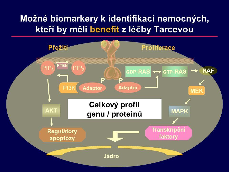 PP Adaptor Transkripční faktory Jádro MAPK MEK RAF GTP -RAS GDP -RAS Proliferace Přežití PIP 2 PI3K PIP 3 PTEN AKT Regulátory apoptózy Možné biomarkery k identifikaci nemocných, kteří by měli benefit z léčby Tarcevou Celkový profil genů / proteinů