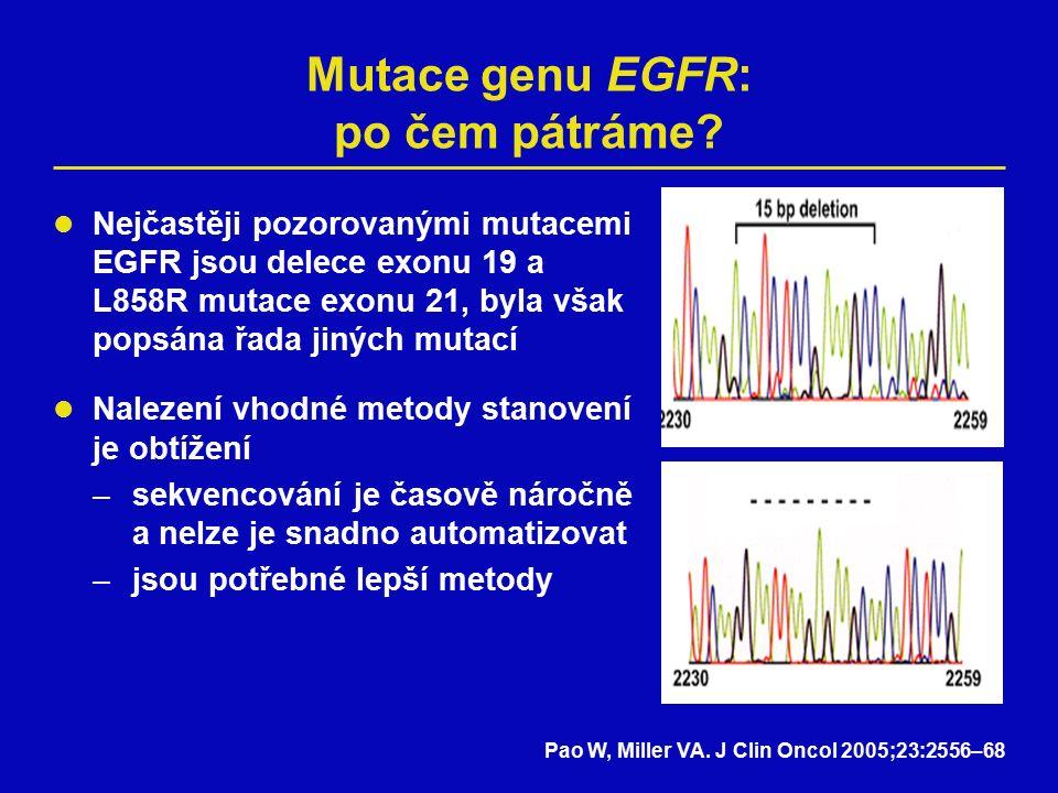 Mutace genu EGFR: po čem pátráme.