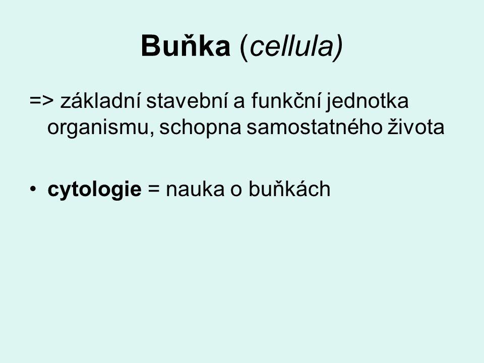 Buňka (cellula) => základní stavební a funkční jednotka organismu, schopna samostatného života cytologie = nauka o buňkách