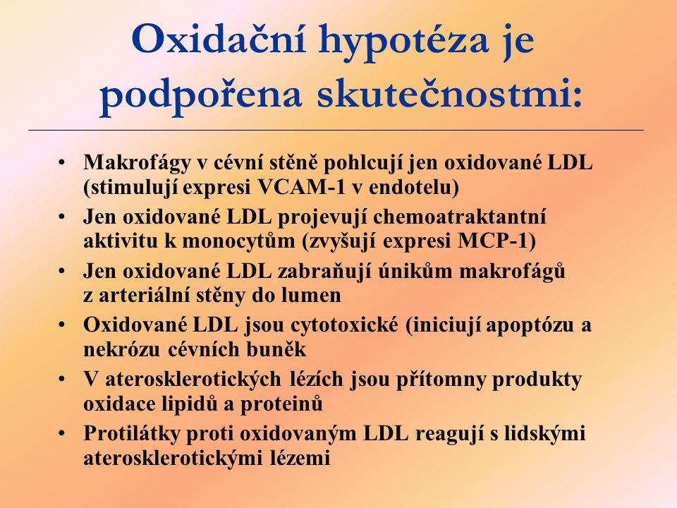 Oxidační hypotéza je podpořena skutečnostmi: Makrofágy v cévní stěně pohlcují jen oxidované LDL (stimulují expresi VCAM-1 v endotelu) Jen oxidované LDL projevují chemoatraktantní aktivitu k monocytům (zvyšují expresi MCP-1) Jen oxidované LDL zabraňují únikům makrofágů z arteriální stěny do lumen Oxidované LDL jsou cytotoxické (iniciují apoptózu a nekrózu cévních buněk V aterosklerotických lézích jsou přítomny produkty oxidace lipidů a proteinů Protilátky proti oxidovaným LDL reagují s lidskými aterosklerotickými lézemi