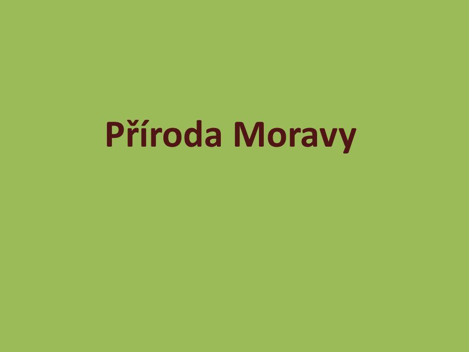 Příroda Moravy