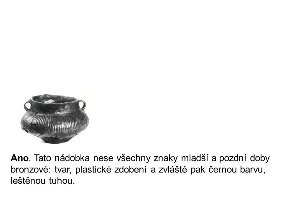 Ano. Tato nádobka nese všechny znaky mladší a pozdní doby bronzové: tvar, plastické zdobení a zvláště pak černou barvu, leštěnou tuhou.