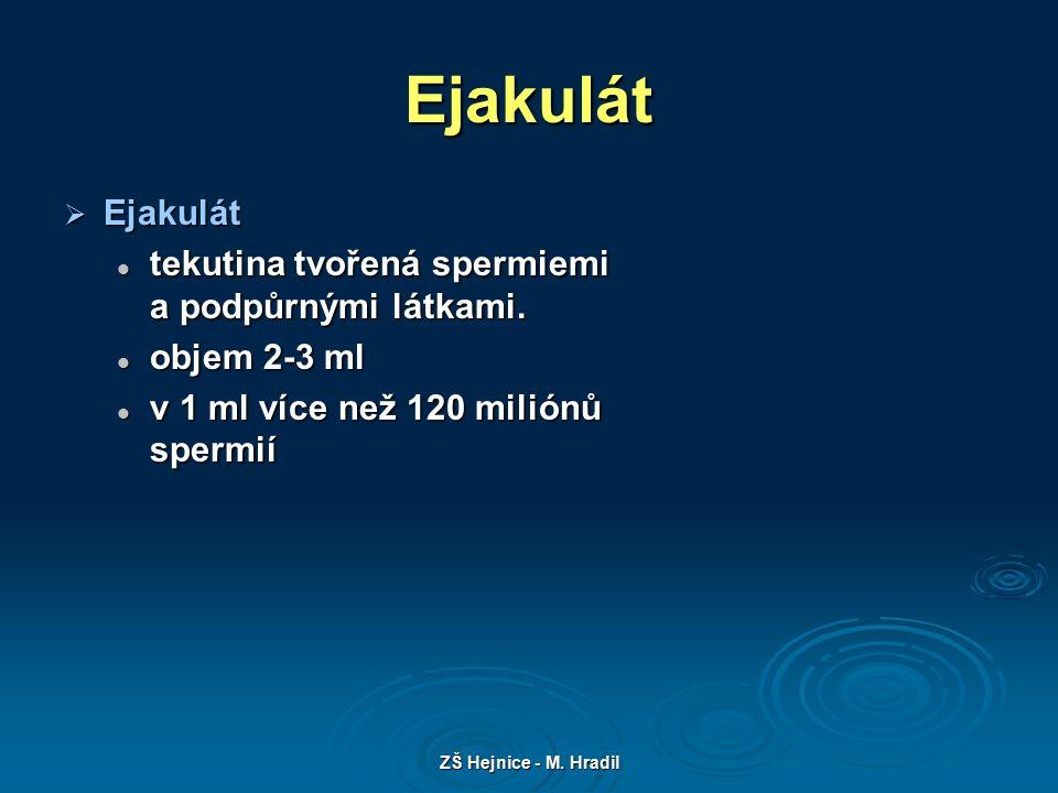 ZŠ Hejnice - M. Hradil Ejakulát  Ejakulát tekutina tvořená spermiemi a podpůrnými látkami.