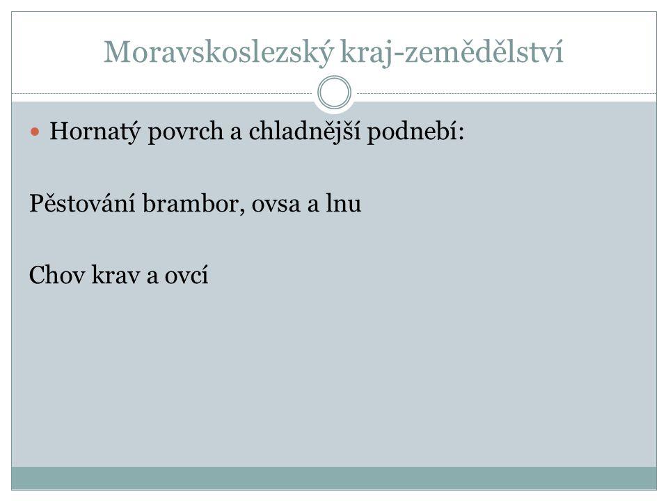 Moravskoslezský kraj-zemědělství Hornatý povrch a chladnější podnebí: Pěstování brambor, ovsa a lnu Chov krav a ovcí