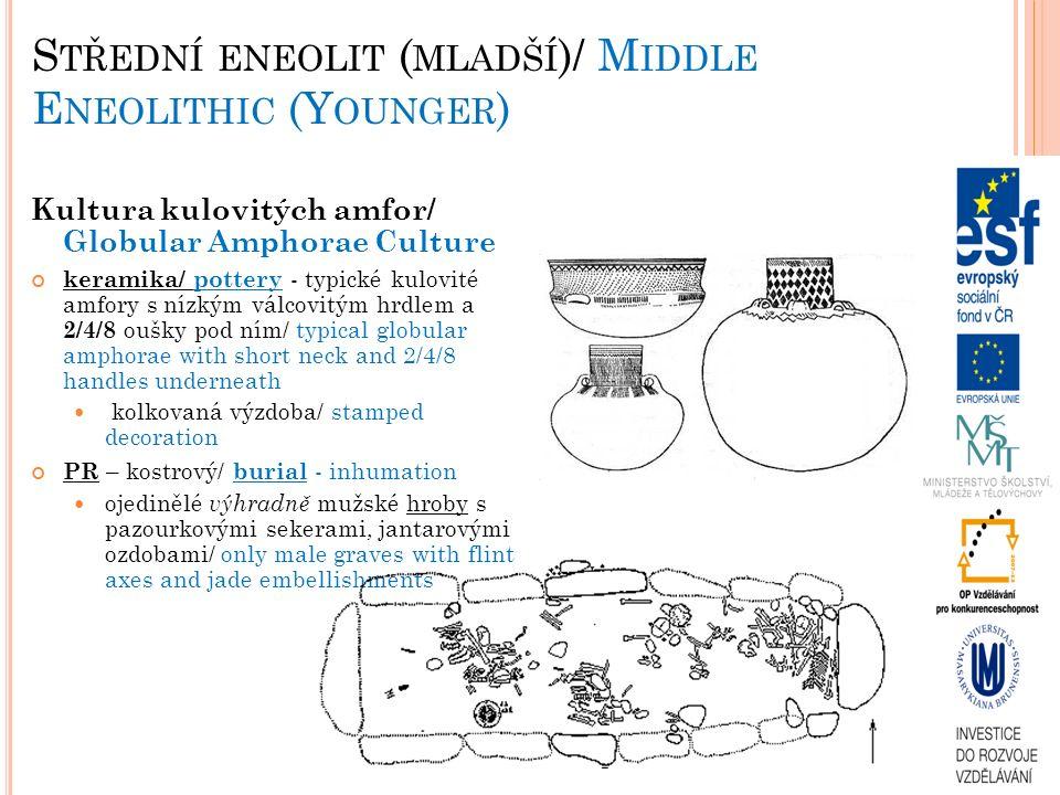 S TŘEDNÍ ENEOLIT ( MLADŠÍ )/ M IDDLE E NEOLITHIC (Y OUNGER ) Kultura kulovitých amfor/ Globular Amphorae Culture keramika/ pottery - typické kulovité amfory s nízkým válcovitým hrdlem a 2/4/8 oušky pod ním/ typical globular amphorae with short neck and 2/4/8 handles underneath kolkovaná výzdoba/ stamped decoration PR – kostrový/ burial - inhumation ojedinělé výhradně mužské hroby s pazourkovými sekerami, jantarovými ozdobami/ only male graves with flint axes and jade embellishments