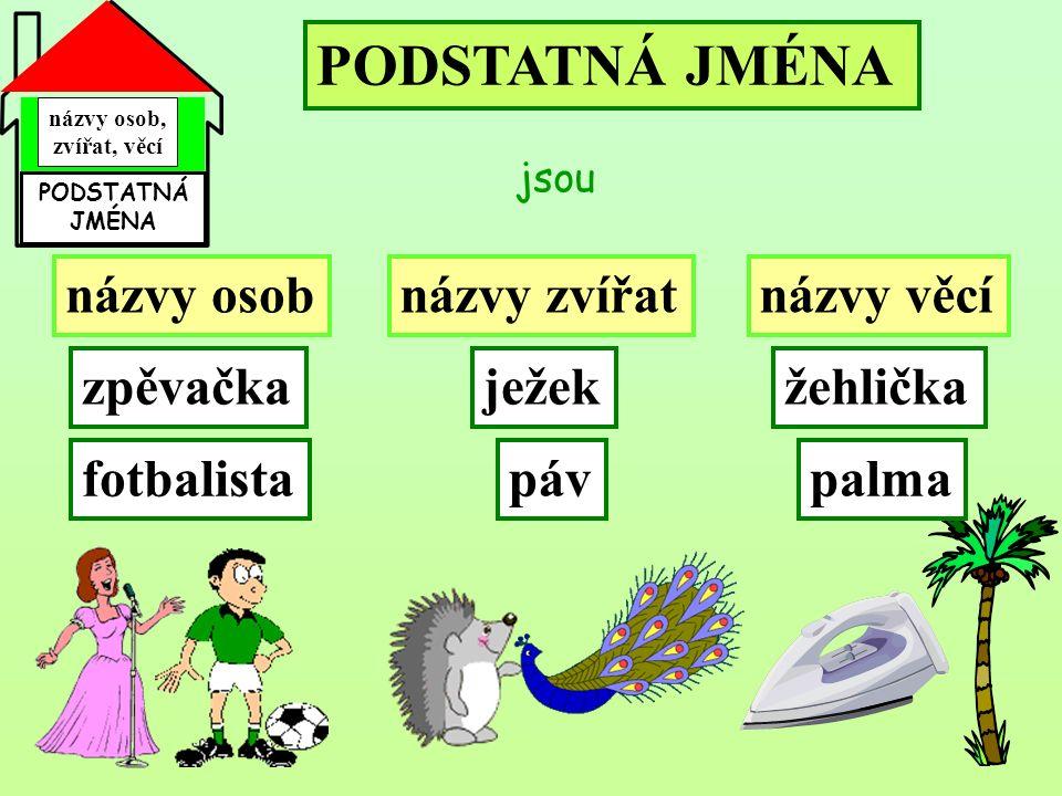 názvy osob, zvířat, věcí PODSTATNÁ JMÉNA PODSTATNÁ JMÉNA jsou názvy osobnázvy zvířatnázvy věcí zpěvačka fotbalista ježek páv žehlička palma