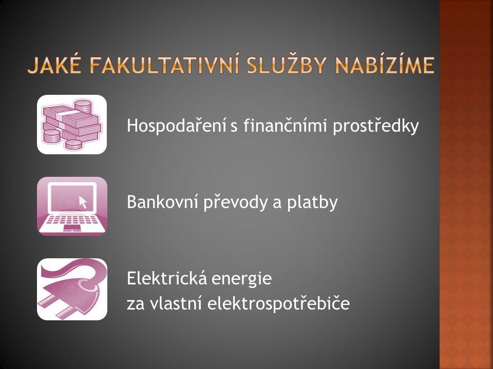 Hospodaření s finančními prostředky Bankovní převody a platby Elektrická energie za vlastní elektrospotřebiče