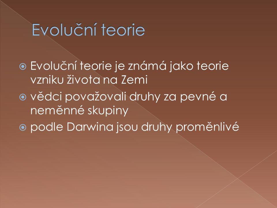  Evoluční teorie je známá jako teorie vzniku života na Zemi  vědci považovali druhy za pevné a neměnné skupiny  podle Darwina jsou druhy proměnlivé