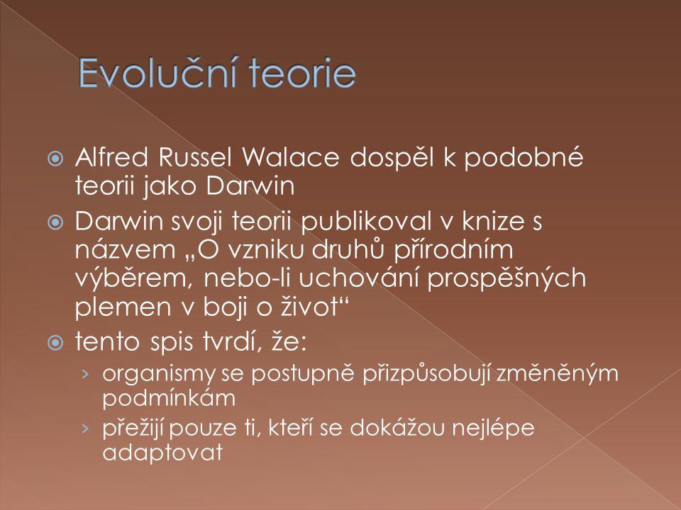""" Alfred Russel Walace dospěl k podobné teorii jako Darwin  Darwin svoji teorii publikoval v knize s názvem """"O vzniku druhů přírodním výběrem, nebo-li uchování prospěšných plemen v boji o život  tento spis tvrdí, že: › organismy se postupně přizpůsobují změněným podmínkám › přežijí pouze ti, kteří se dokážou nejlépe adaptovat"""