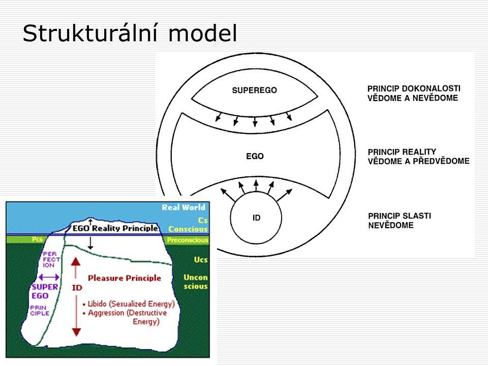 Strukturální model