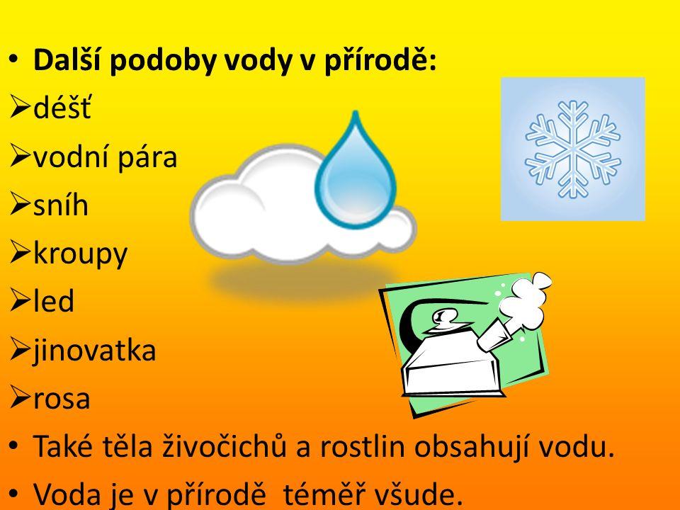 Další podoby vody v přírodě:  déšť  vodní pára  sníh  kroupy  led  jinovatka  rosa Také těla živočichů a rostlin obsahují vodu.