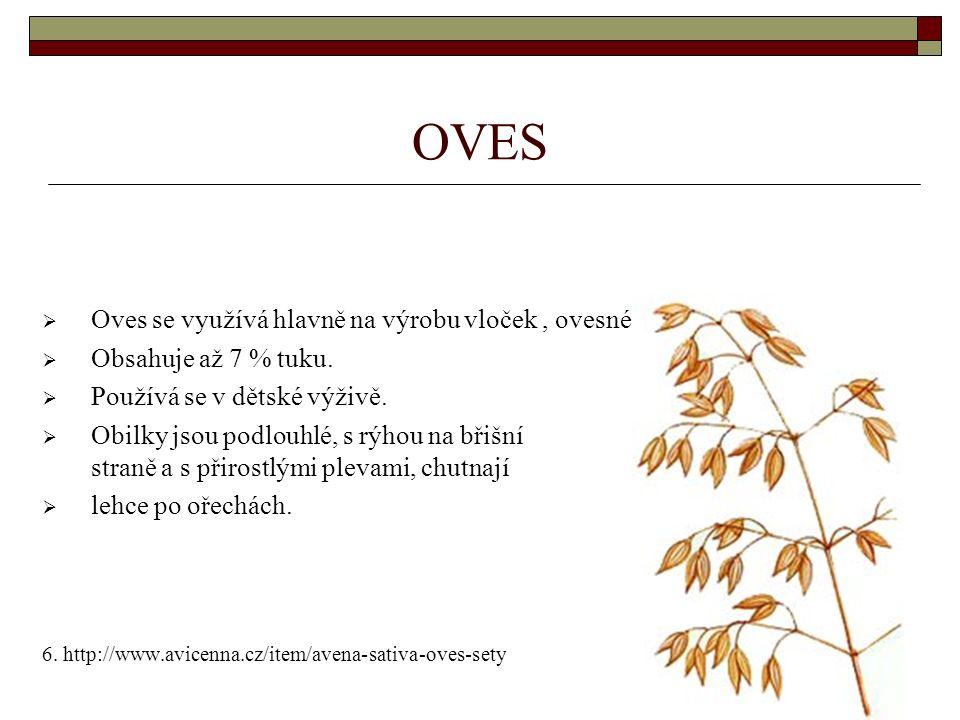 OVES  Oves se využívá hlavně na výrobu vloček, ovesné rýže a jako krmivo.