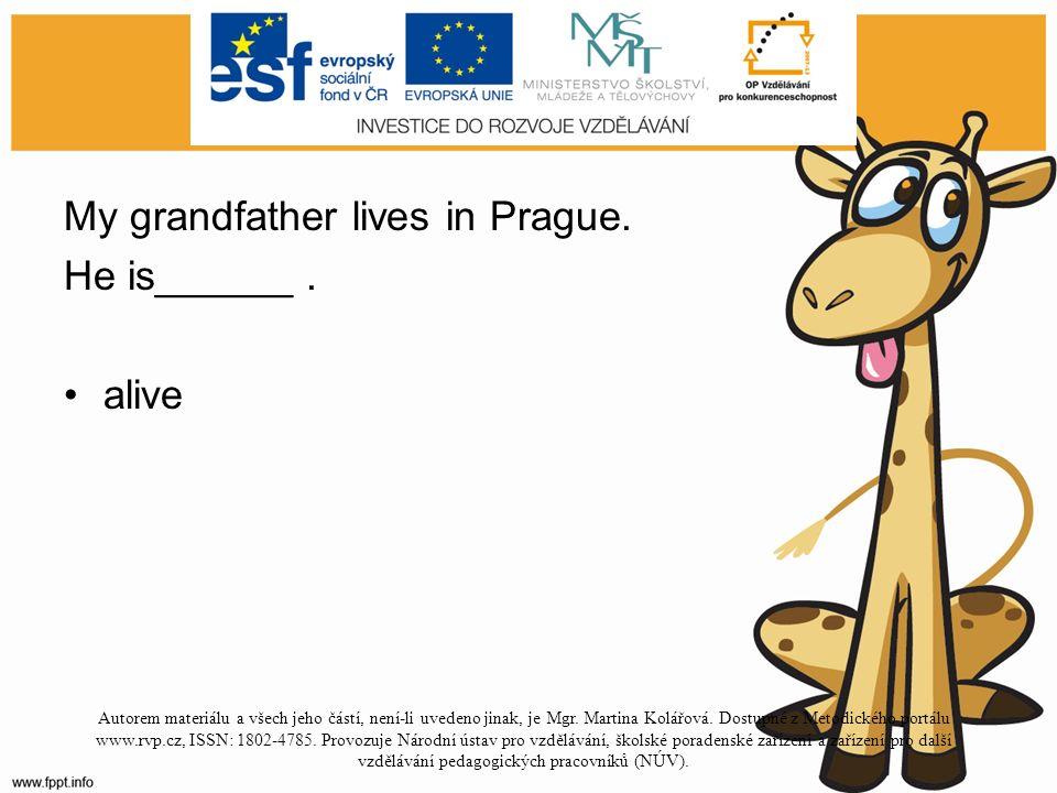 Doplň přídavné jméno do věty. My grandfather lives in Prague.