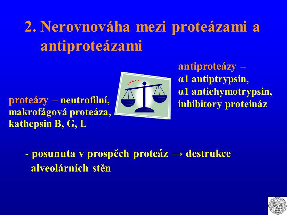 2. Nerovnováha mezi proteázami a antiproteázami proteázy – neutrofilní, makrofágová proteáza, kathepsin B, G, L antiproteázy – α1 antiptrypsin, α1 ant