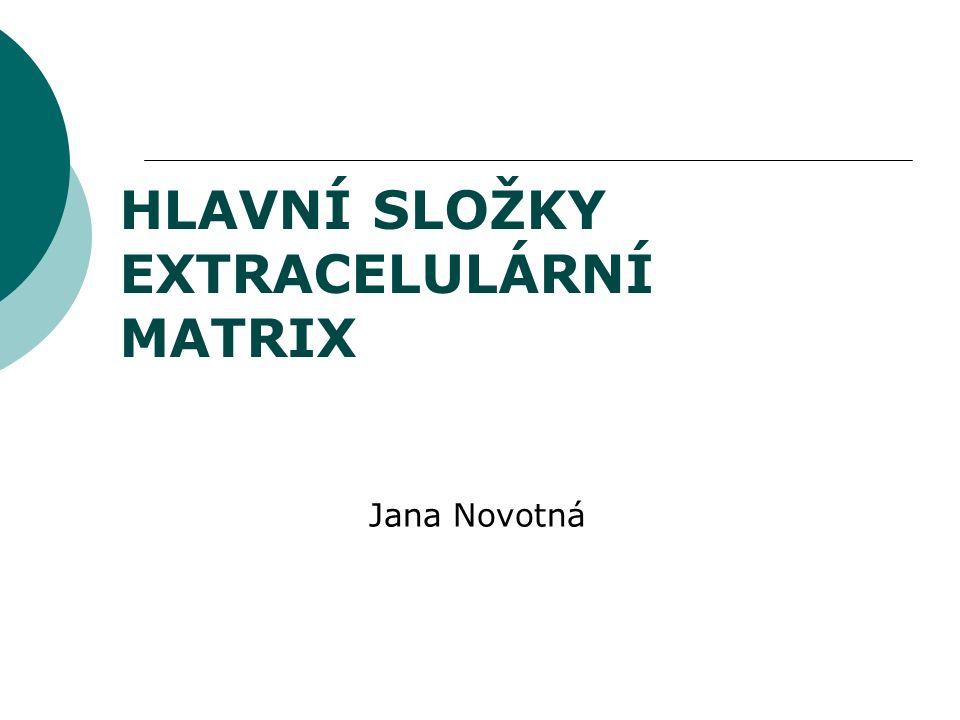 HLAVNÍ SLOŽKY EXTRACELULÁRNÍ MATRIX Jana Novotná