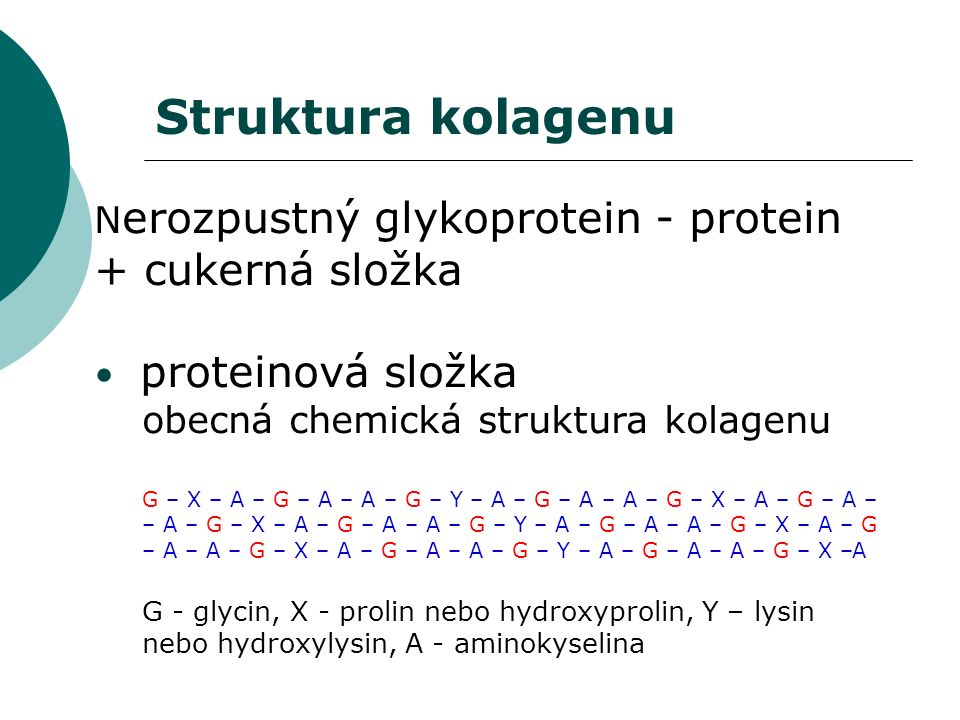 N erozpustný glykoprotein - protein + cukerná složka proteinová složka obecná chemická struktura kolagenu G – X – A – G – A – A – G – Y – A – G – A – A – G – X – A – G – A – – A – G – X – A – G – A – A – G – Y – A – G – A – A – G – X – A – G – A – A – G – X – A – G – A – A – G – Y – A – G – A – A – G – X –A G - glycin, X - prolin nebo hydroxyprolin, Y – lysin nebo hydroxylysin, A - aminokyselina Struktura kolagenu