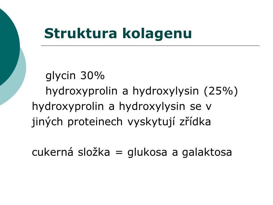 Pevnost v tahu díky konformaci náhodného klubka.Vysoký obsah prolinu a hydroxyprolinu.