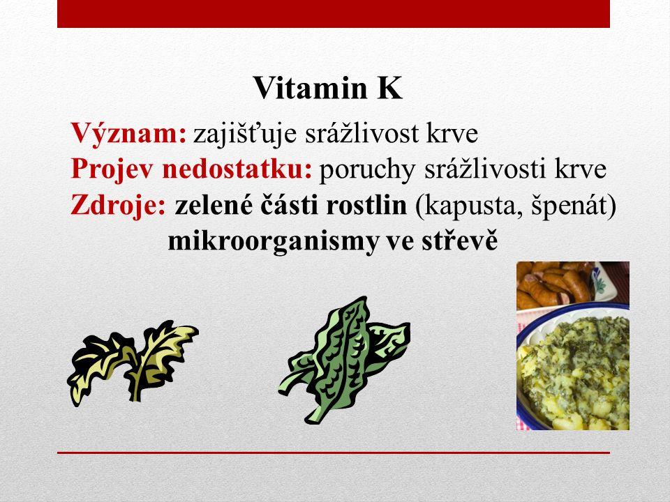 Vitamin K Význam: zajišťuje srážlivost krve Projev nedostatku: poruchy srážlivosti krve Zdroje: zelené části rostlin (kapusta, špenát) mikroorganismy ve střevě
