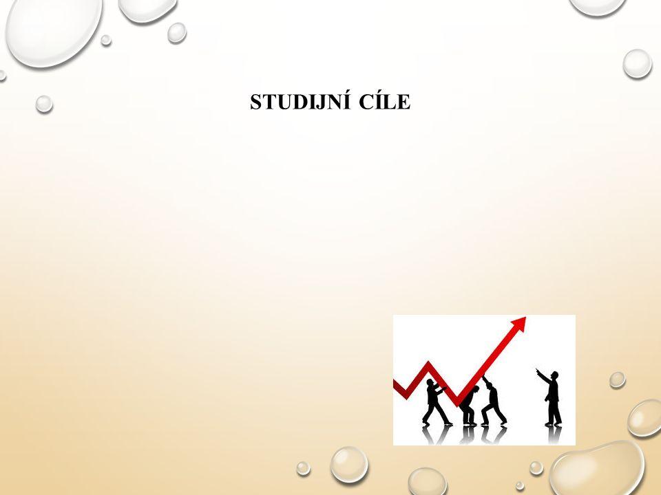 STUDIJNÍ CÍLE