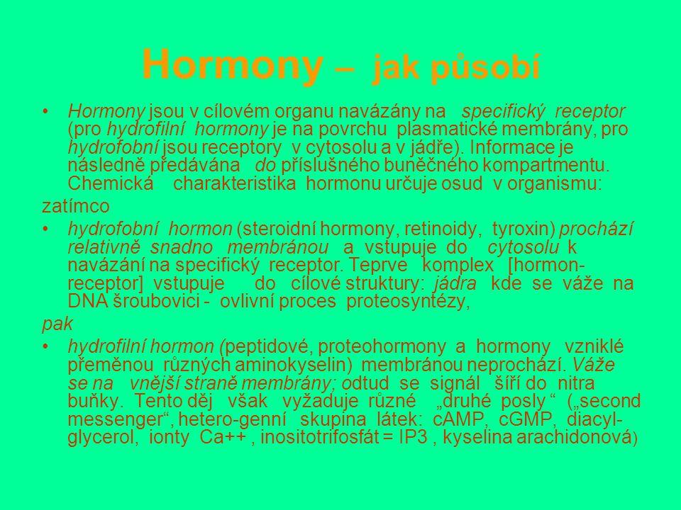 Hormony – jak působí Hormony jsou v cílovém organu navázány na specifický receptor (pro hydrofilní hormony je na povrchu plasmatické membrány, pro hydrofobní jsou receptory v cytosolu a v jádře).