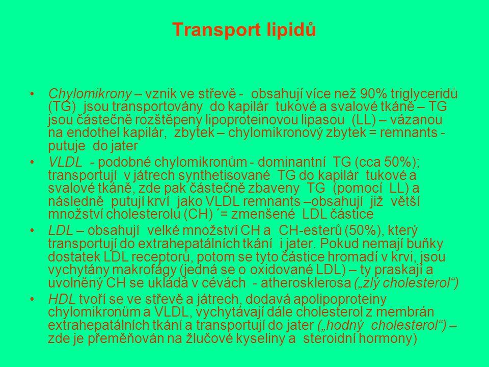Transport lipidů Chylomikrony – vznik ve střevě - obsahují více než 90% triglyceridů (TG) jsou transportovány do kapilár tukové a svalové tkáně – TG jsou částečně rozštěpeny lipoproteinovou lipasou (LL) – vázanou na endothel kapilár, zbytek – chylomikronový zbytek = remnants - putuje do jater VLDL - podobné chylomikronům - dominantní TG (cca 50%); transportují v játrech synthetisované TG do kapilár tukové a svalové tkáně, zde pak částečně zbaveny TG (pomocí LL) a následně putují krví jako VLDL remnants –obsahují již větší množství cholesterolu (CH) ´= zmenšené LDL částice LDL – obsahují velké množství CH a CH-esterů (50%), který transportují do extrahepatálních tkání i jater.