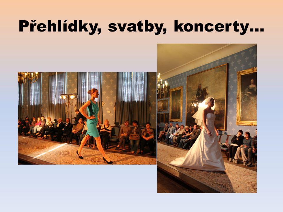 Přehlídky, svatby, koncerty…