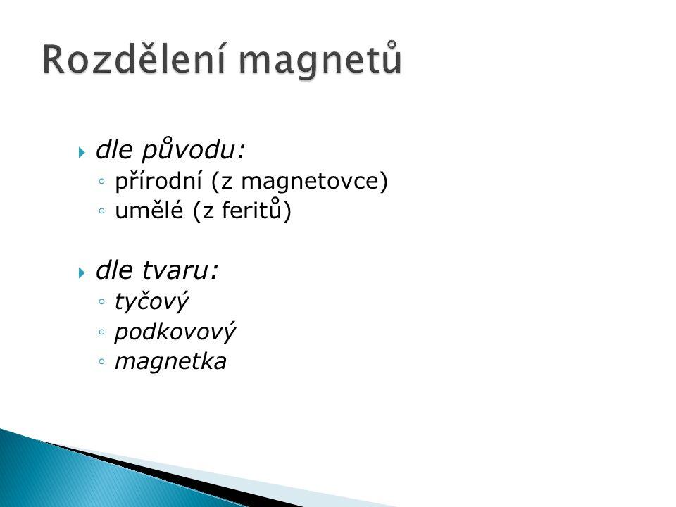  dle původu: ◦přírodní (z magnetovce) ◦umělé (z feritů)  dle tvaru: ◦tyčový ◦podkovový ◦magnetka