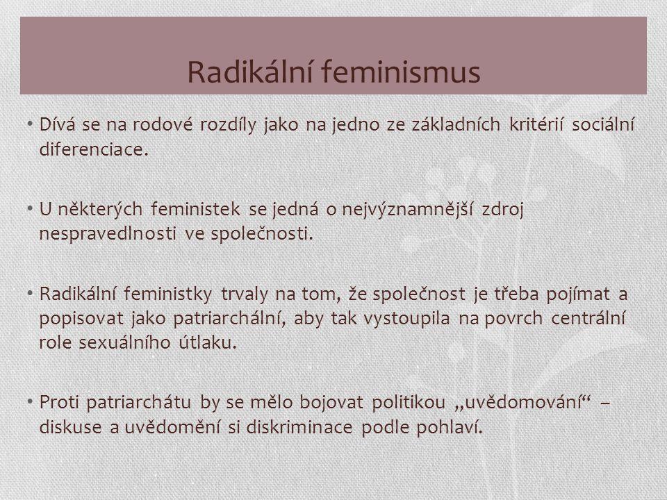 Radikální feminismus Dívá se na rodové rozdíly jako na jedno ze základních kritérií sociální diferenciace.