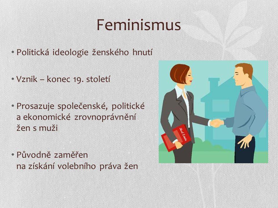 Přívrženci feminismu Zakládají sdružení Poukazují na vžité sexuální stereotypy Organizují kampaně týkající se: - domácího násilí vůči ženě - pornografie - potratů - stejných mezd - rovných příležitostí