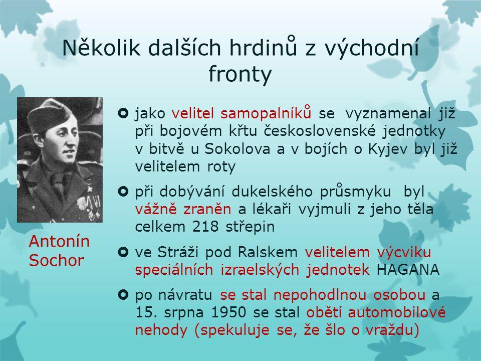 Několik dalších hrdinů z východní fronty  jako velitel samopalníků se vyznamenal již při bojovém křtu československé jednotky v bitvě u Sokolova a v bojích o Kyjev byl již velitelem roty  při dobývání dukelského průsmyku byl vážně zraněn a lékaři vyjmuli z jeho těla celkem 218 střepin  ve Stráži pod Ralskem velitelem výcviku speciálních izraelských jednotek HAGANA  po návratu se stal nepohodlnou osobou a 15.