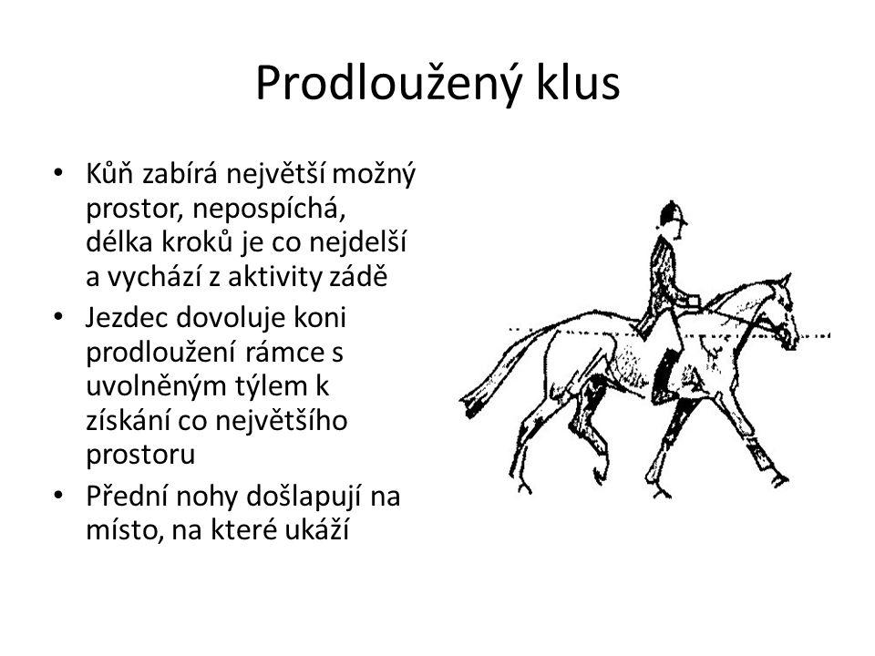 Prodloužený klus Kůň zabírá největší možný prostor, nepospíchá, délka kroků je co nejdelší a vychází z aktivity zádě Jezdec dovoluje koni prodloužení rámce s uvolněným týlem k získání co největšího prostoru Přední nohy došlapují na místo, na které ukáží