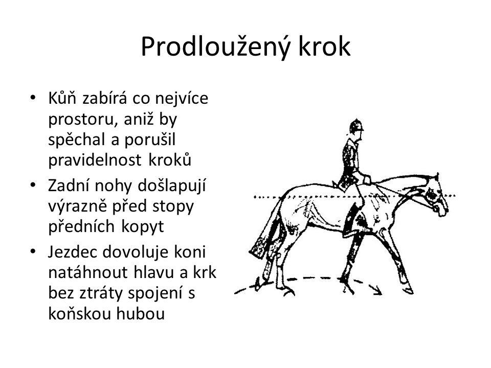 Prodloužený krok Kůň zabírá co nejvíce prostoru, aniž by spěchal a porušil pravidelnost kroků Zadní nohy došlapují výrazně před stopy předních kopyt Jezdec dovoluje koni natáhnout hlavu a krk bez ztráty spojení s koňskou hubou