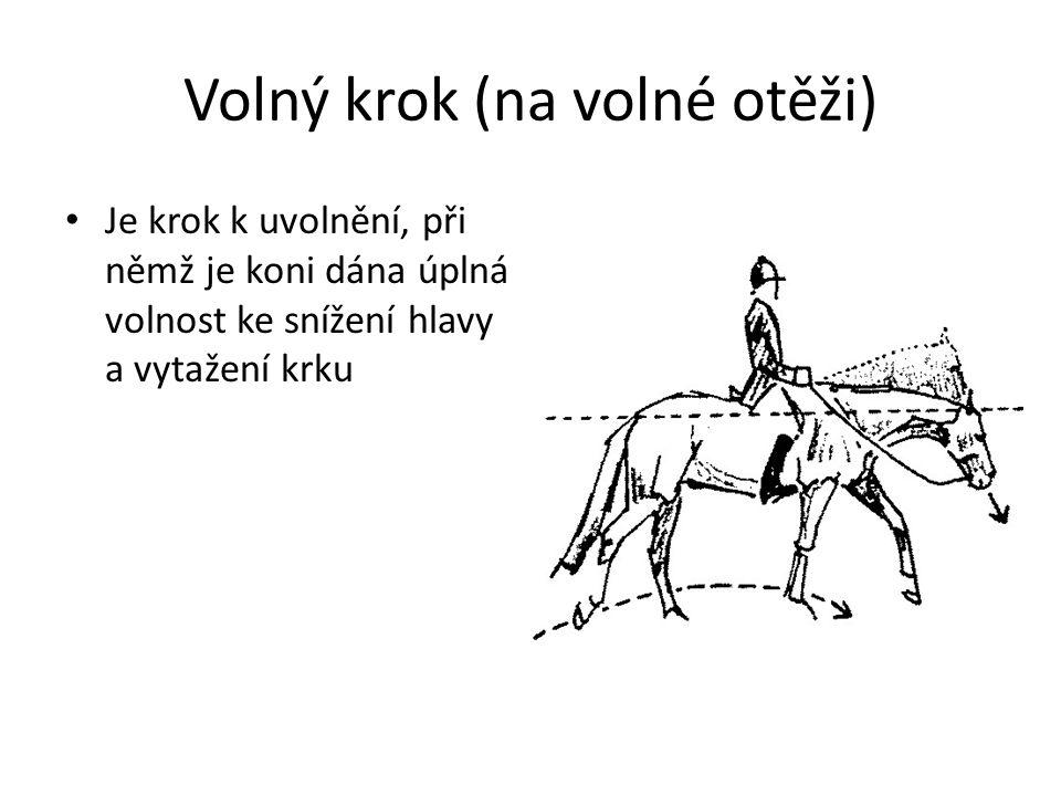 Volný krok (na volné otěži) Je krok k uvolnění, při němž je koni dána úplná volnost ke snížení hlavy a vytažení krku