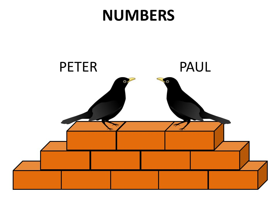 NUMBERS PETERPAUL