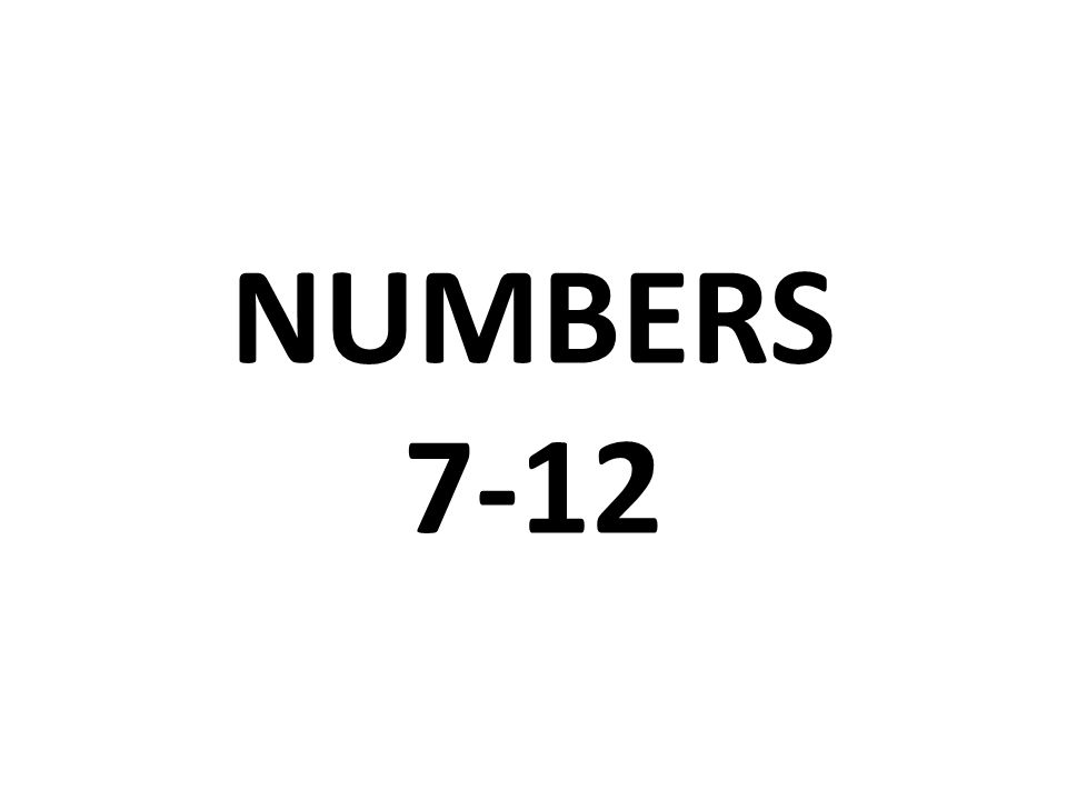 NUMBERS 7-12