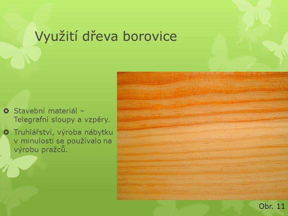 Využití dřeva borovice  Stavební materiál – Telegrafní sloupy a vzpěry.  Truhlářství, výroba nábytku v minulosti se používalo na výrobu pražců. Obr.