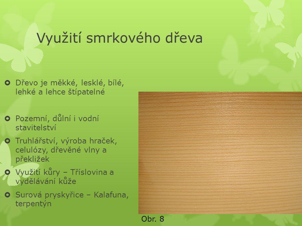 Využití smrkového dřeva  Dřevo je měkké, lesklé, bílé, lehké a lehce štípatelné  Pozemní, důlní i vodní stavitelství  Truhlářství, výroba hraček, c
