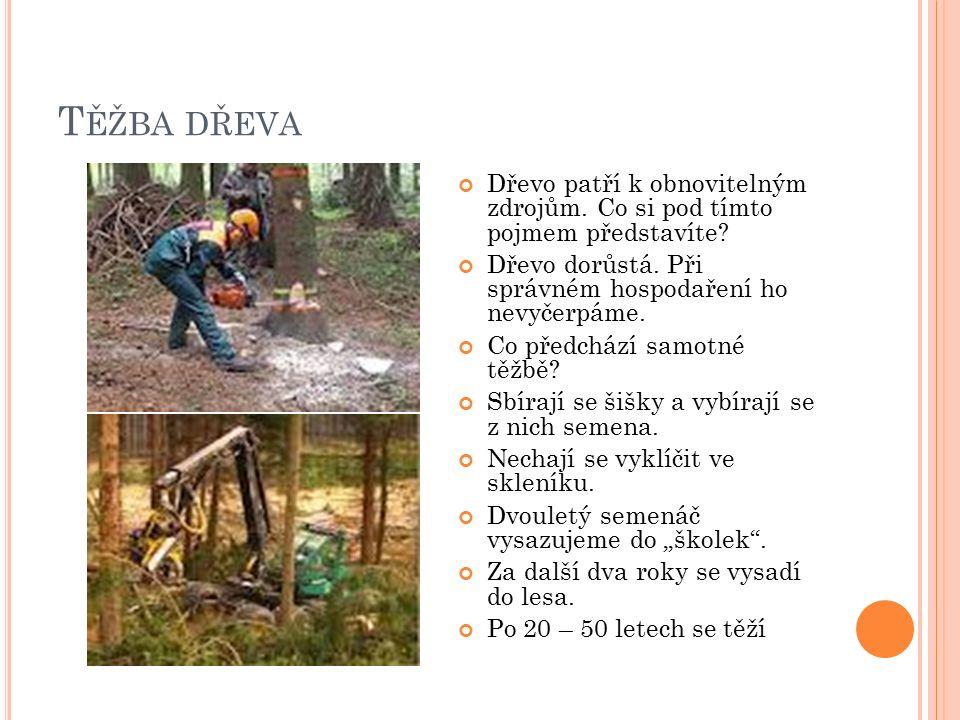 T ĚŽBA DŘEVA Dřevo patří k obnovitelným zdrojům. Co si pod tímto pojmem představíte? Dřevo dorůstá. Při správném hospodaření ho nevyčerpáme. Co předch