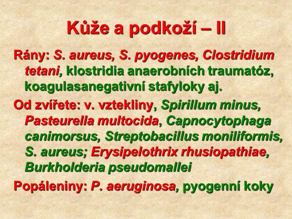 Kůže a podkoží – II Rány: S. aureus, S.
